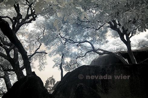2007Nov_SouthIndia_1235